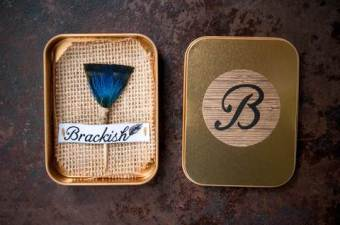 Brackish feather and thorn lapel pin