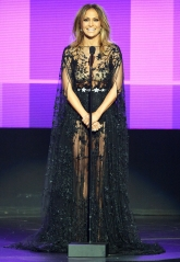 Sheer in Zuhair Murad (love)